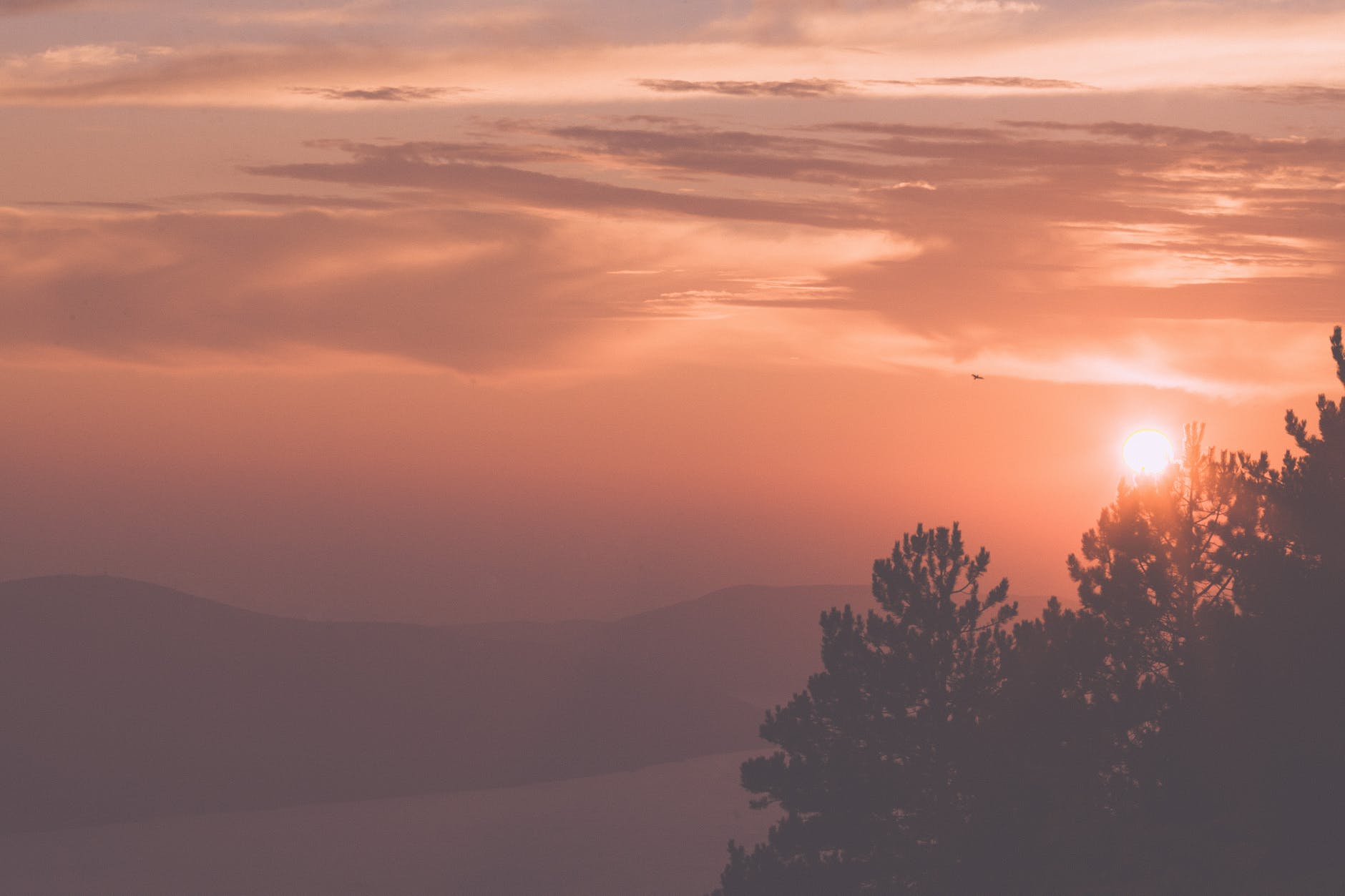 sunset sky over mountainous terrain with growing trees