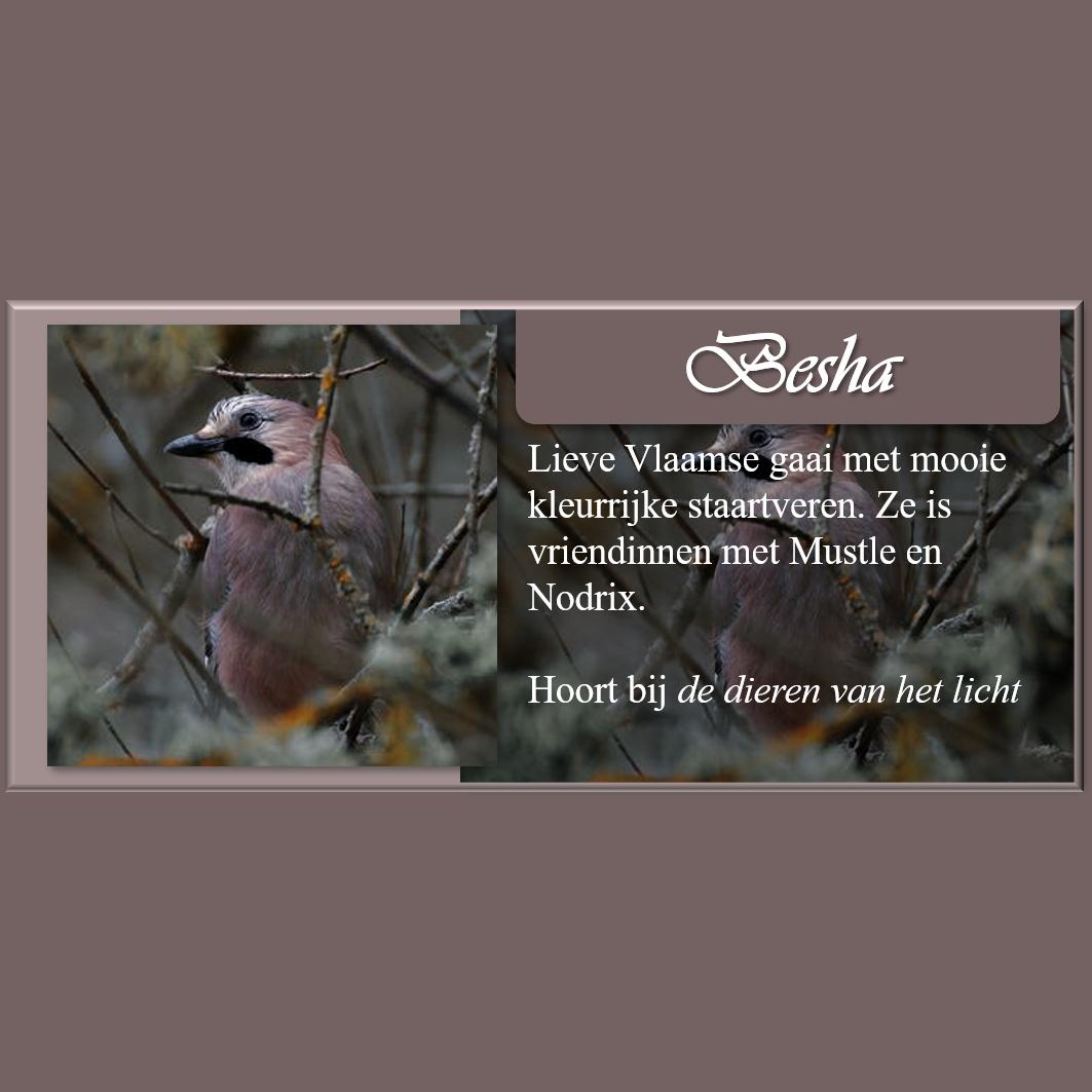 Personagekaart Besha
